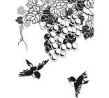 【Y5-C015】葡萄和喜鹊矢量图