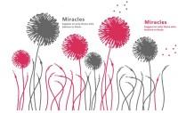 【BO-WS-002】蒲公英和miracles矢量图