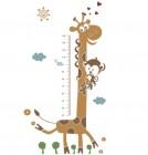 【KT-2888】长颈鹿身高 矢量图