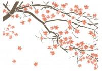 【KT-2910】枫树 枫叶 矢量图