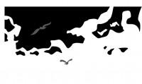 【KT-2955】海景 大雁 矢量图