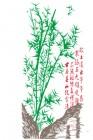 【KT-3213】竹子 矢量图