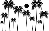 【CX-240】椰树 太阳 矢量图