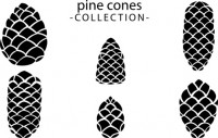 【CX-296】菠萝 pine cones collection  矢量图