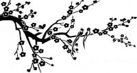 【CX-485】喜鹊登枝 梅花 矢量图