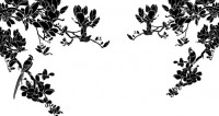 【CX-540】玉兰花 喜鹊  矢量图