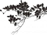 【CX-458】玉兰花  矢量图