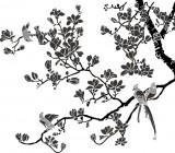 【CX-477】玉兰花 喜鹊登枝 矢量图